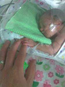 Mattie - 1 day old