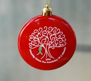2014 Hope Ornament